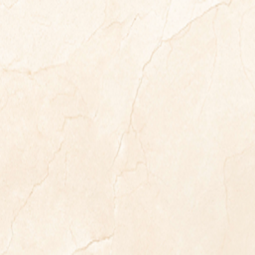 floor tiles wall tiles Vasto Silk 24x48 Glossy